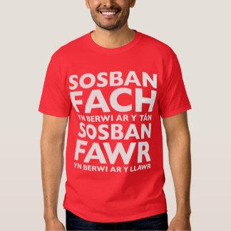 Sosban Fach Yn Berwi Ar Y Tan T-Shirt