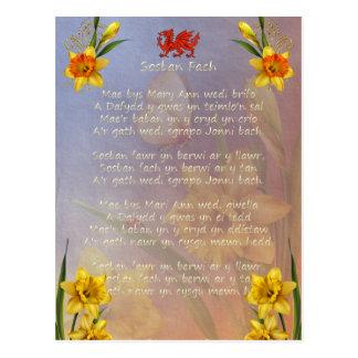Sospan Fach Daffodil Decorated Postcard