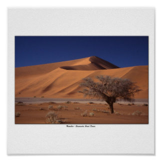 Sossussvlei sand dunes poster