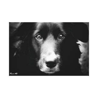 Soul Eyes Canvas Print