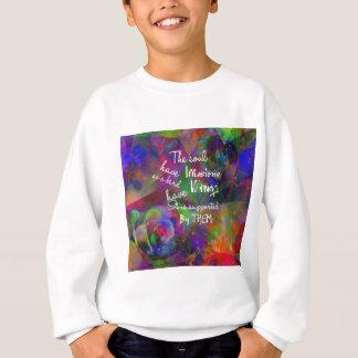 Soul have wings as bird sweatshirt