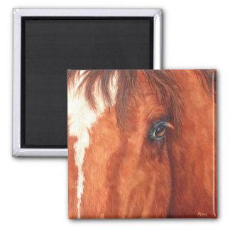 Soul - Horse Magnet
