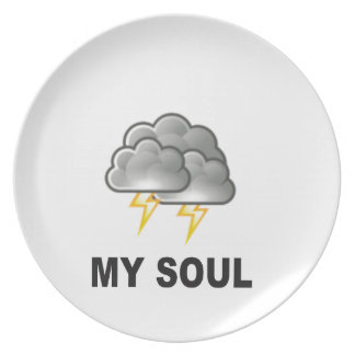 soul my storms plate