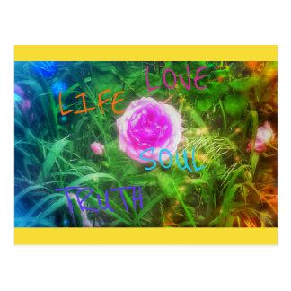 Soul Rose Postcard