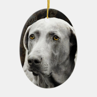 Soulful Eyes of the Weimaraner Ceramic Ornament