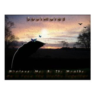 """Soulmates Stormy Weather""* Postcard"