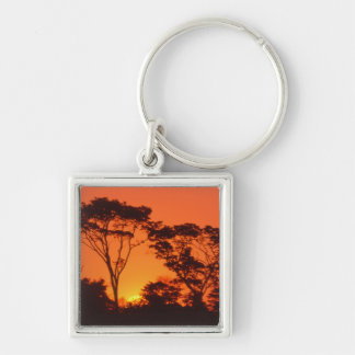 South Africa.  African sunset. Silver-Colored Square Key Ring