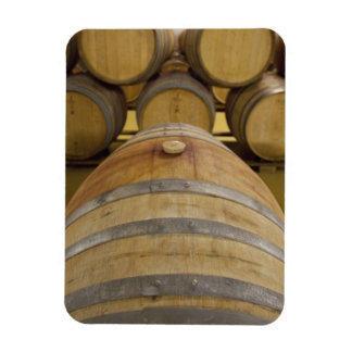 South Africa, Cape Town. Stellenbosch wine area, Rectangular Photo Magnet