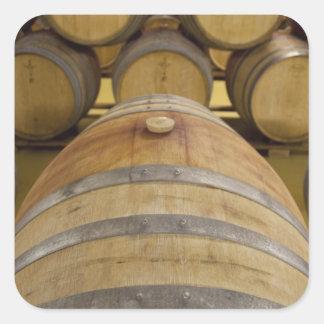 South Africa, Cape Town. Stellenbosch wine area, Square Sticker