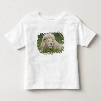 South Africa, East London, Inkwenkwezi Private Toddler T-Shirt