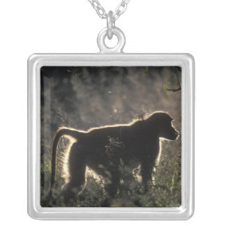 South Africa, Pilanesburg Game Reserve, Chacma Square Pendant Necklace