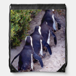 South Africa, Simons Town. Follow the leader. Drawstring Backpacks