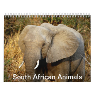 South African Animals Calendars