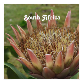 South African King Protea Personalized Invitations