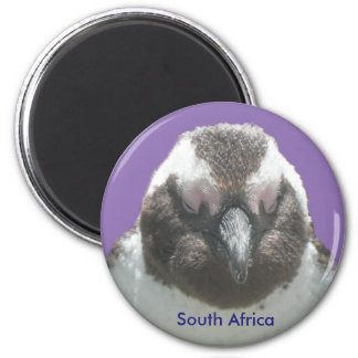 South African Penguin Face Customizable Magnet