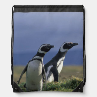 South America, Chile, Patagonia, Magellanes, 2 Drawstring Bag