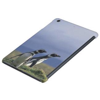 South America, Chile, Patagonia, Magellanes, 2 iPad Mini Cases
