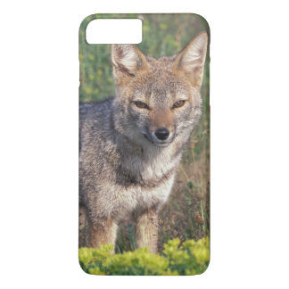 South America, Chile, Torres del Paine NP, iPhone 7 Plus Case