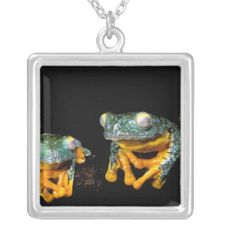 South America, Ecuador, Amazon. Leaf frogs Square Pendant Necklace
