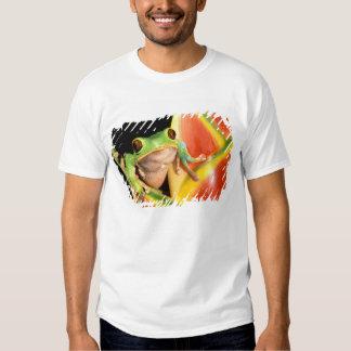 South America, Ecuador, Amazon. Tree frog T-shirt