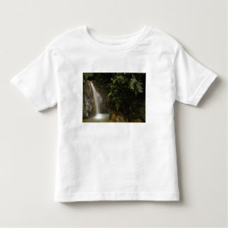 South America, Ecuador, eastern slope of the T Shirts