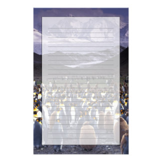 South America, South Georgia Island, King Personalised Stationery