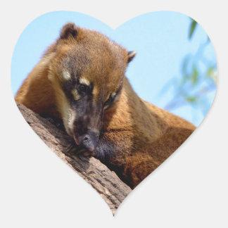 South American Coati in tree Heart Sticker