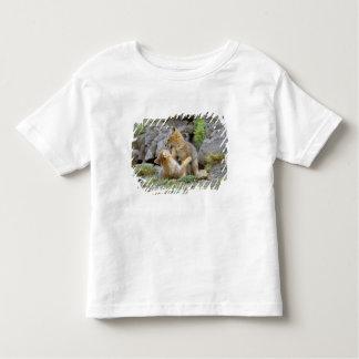 South American Gray Fox (Lycalopex griseus) pair 2 Tees