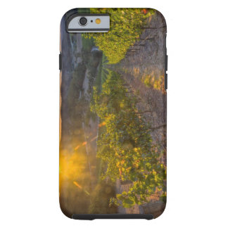 South Australia, Adelaide Hills, Summertown. iPhone 6 Case
