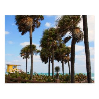 South Beach Lifeguard House Postcard
