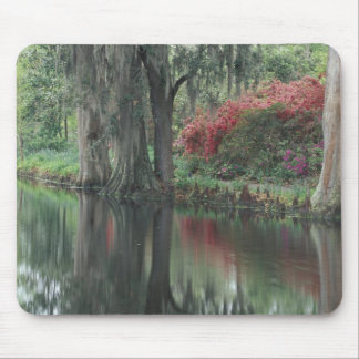 South Carolina, Charleston Mouse Pad