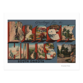 South Dakota - Black Hills - Mt. Rushmore Postcard
