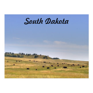 South Dakota Postcard