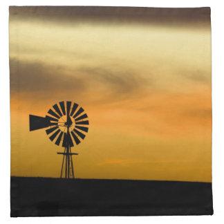South Dakota, USA. Cloth Napkins