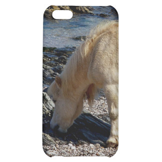 South Devon Beach Shetland Pony In Rocks Cover For iPhone 5C