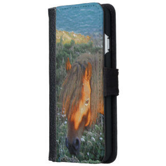 South Devon Coast Dartmoor Pony Summer Evening iPhone 6 Wallet Case