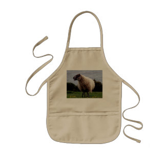 South Devon Coast Sheep Standing Looking Kids Apron