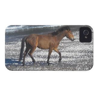 South Devon Dartmoor Pony Trotting On beach iPhone 4 Cover