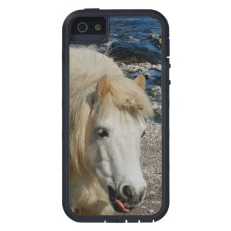 South Devon Shetland Pony Walking On Beach iPhone 5 Covers