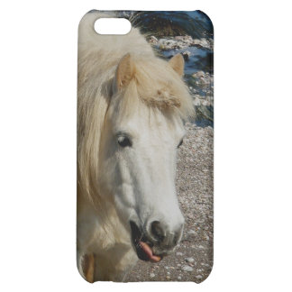South Devon Shetland Pony Walking On Beach Case For iPhone 5C