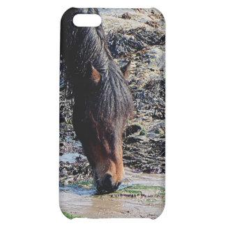 South Devon Wet Dartmoor Pony In Seaweed On Beach iPhone 5C Case