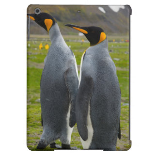 South Georgia. Saint Andrews. King penguin 4 iPad Air Covers