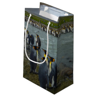 South Georgia. Saint Andrews. King penguin 7 Small Gift Bag