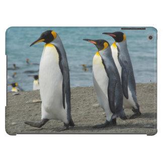 South Georgia. Saint Andrews. King penguins 9 iPad Air Case