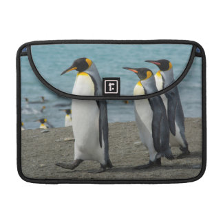South Georgia. Saint Andrews. King penguins 9 Sleeves For MacBook Pro