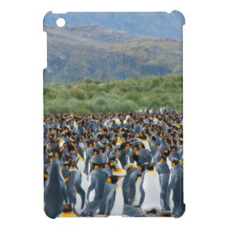 South Georgia. Salisbury Plain. King penguins 3 iPad Mini Cover