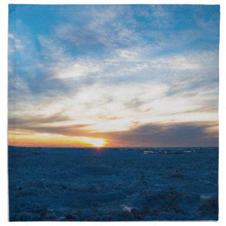 South Haven Lighthouse Frozen Lake Michigan Cloth Napkins