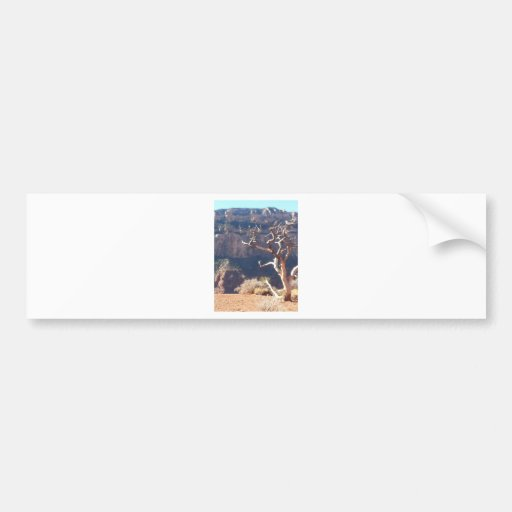 South Kiabab Grand Canyon National Park Mule Ride Bumper Stickers