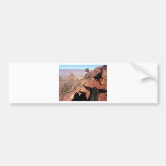 South Kiabab Grand Canyon National Park Mule Ride Bumper Sticker