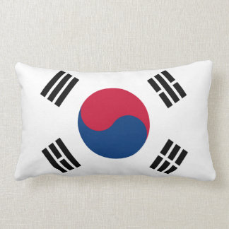 South Korean flag pillow